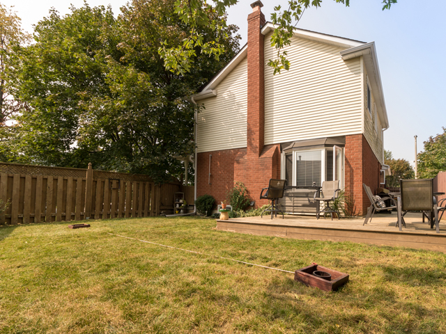 Backyard - 51 Goldpine Ave - Ryan Thomas Real Estate.jpg