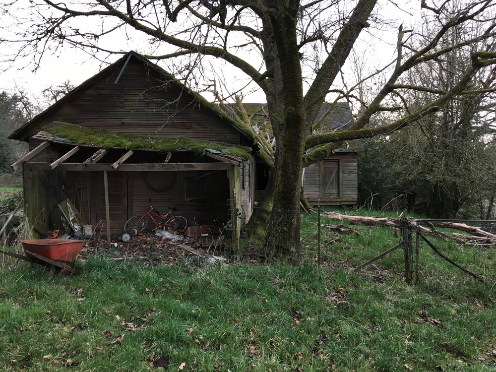 The barn needs to be demolished and removed from the property.
