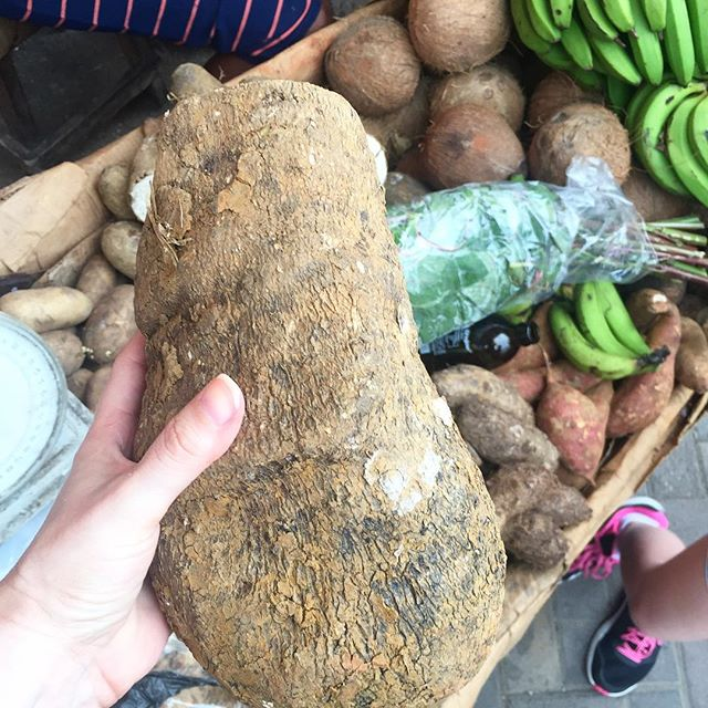 I give you a 5# Thanksgiving yam