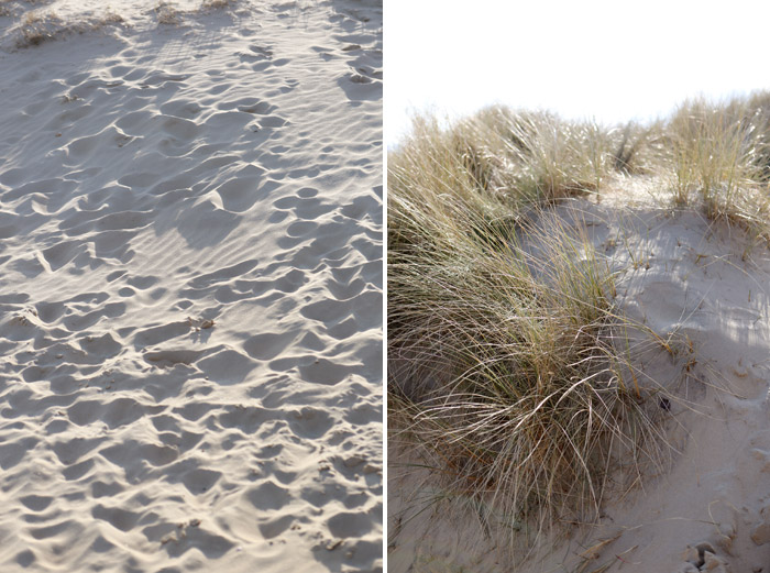 Camber-Sands-Rye.jpg