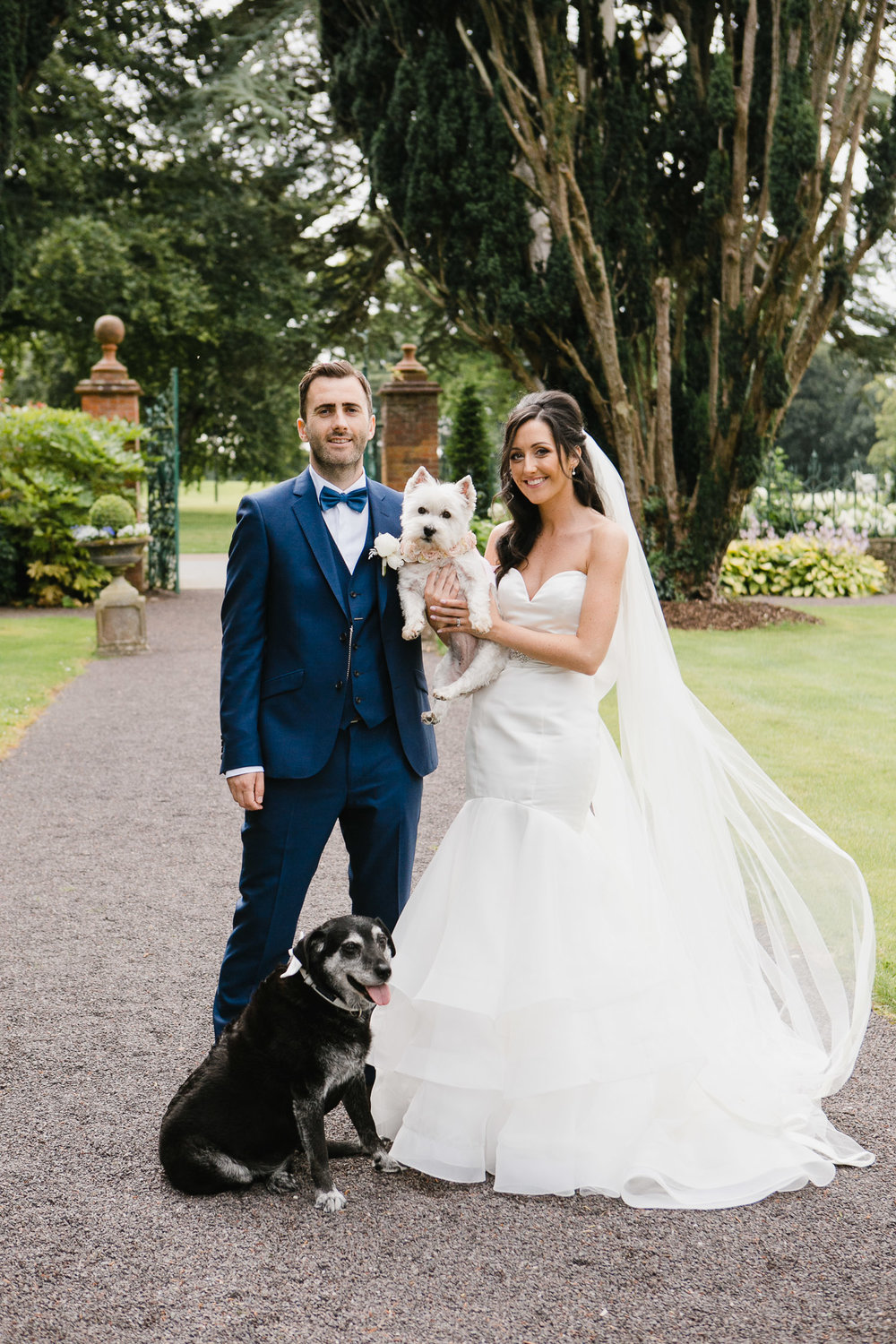 bride and groom with pets at tankardstown house