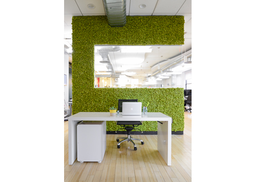 SEATGEEK RECEPTION AREA  To make a rad first impression, this ticket marketplace built a living moss wall in its Gramercy space. Lynch-Sparks says it also camouflages a filing cabinet hiding in back.