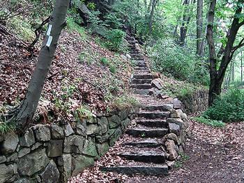 Raccoon Brook Hills Trail Loop