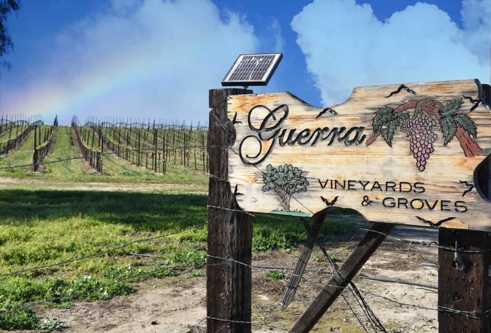 guerra sign with rainbow.jpg