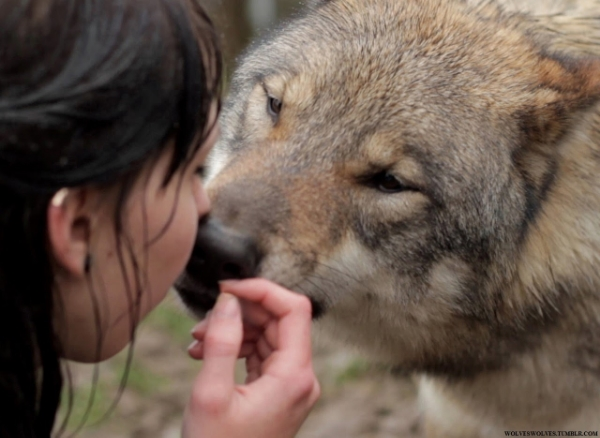 woman and wolf.jpg