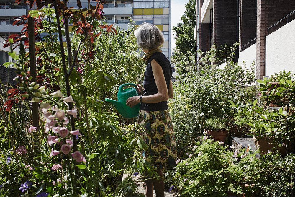 The Garden Edit Journal
