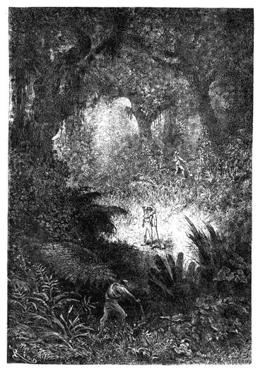 Search for Quinine, Le Tour du Monde: Nouveau Journal des Voyages (1872)