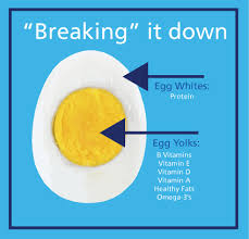 Eggs are your friend, yolks and all!