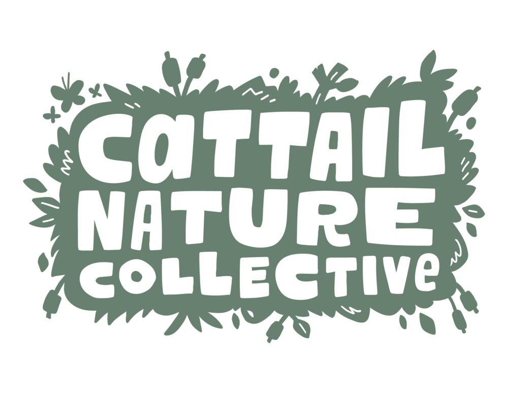 Cattail - color.png