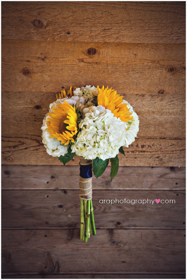 Helotes_wedding__002