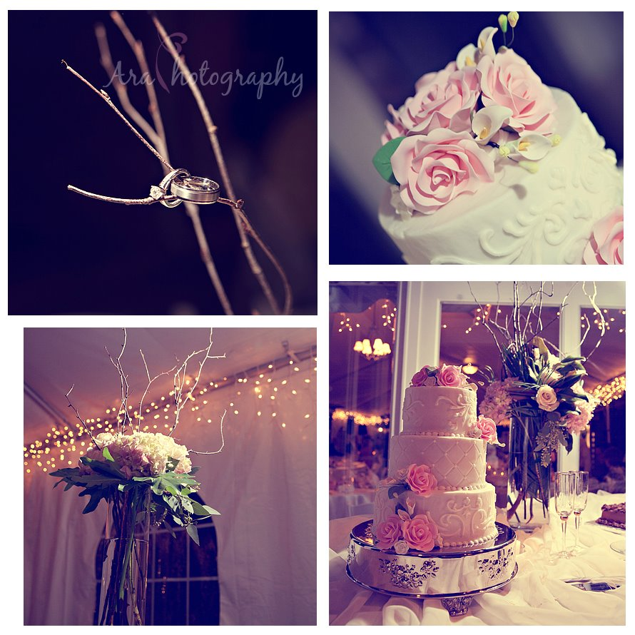 San_Antonio_Wedding_Photography_araphotography_023.jpg