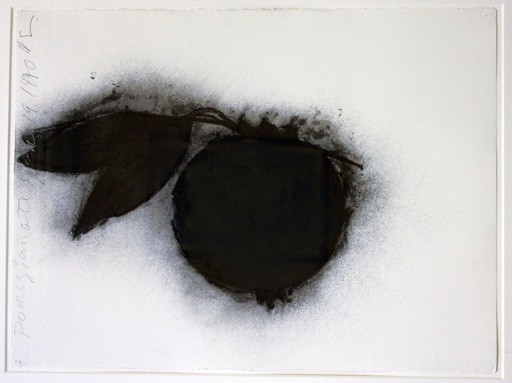 Pomegranate, 1990 Charcoal on paper 22,4 x 29,8 in