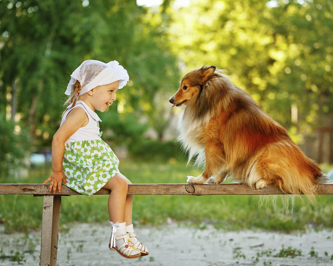 8 Gründe: Darum Sollten Kinder Mit Hunden Aufwachsen