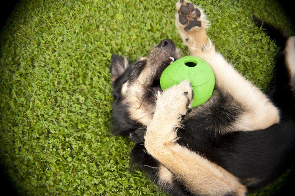 © iStock Ein Ball mit nur einer Öffnung kann lebensgefährlich werden.