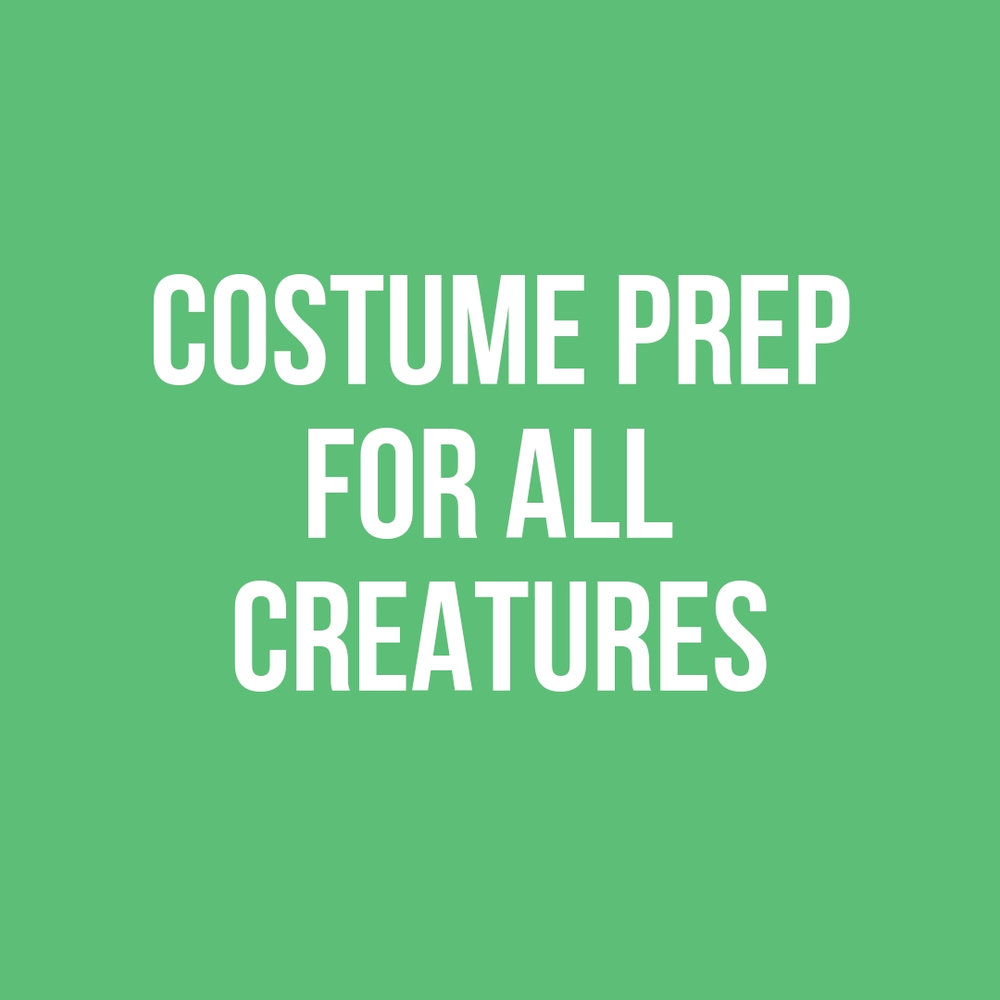 Copy of Costume Prep.jpg