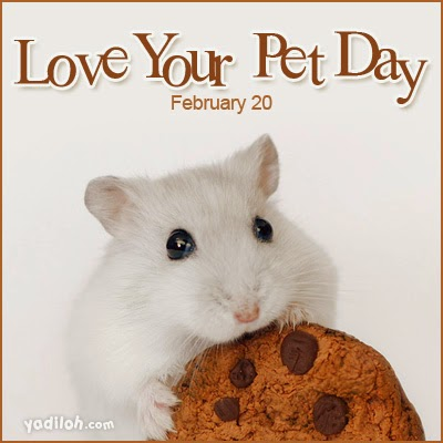 Happy National Love Your Pet Day.jpg