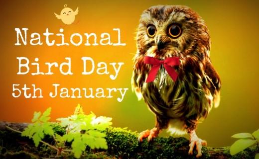 National-Bird-Day-5th-January.jpg