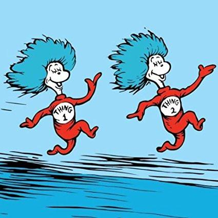 thing 1 and thing 2.jpg