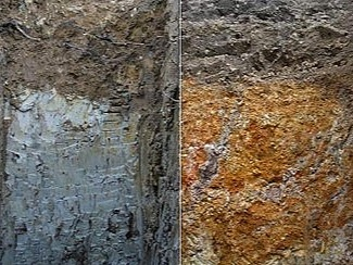 Blue clay and iron-oxide clay in Pomerol