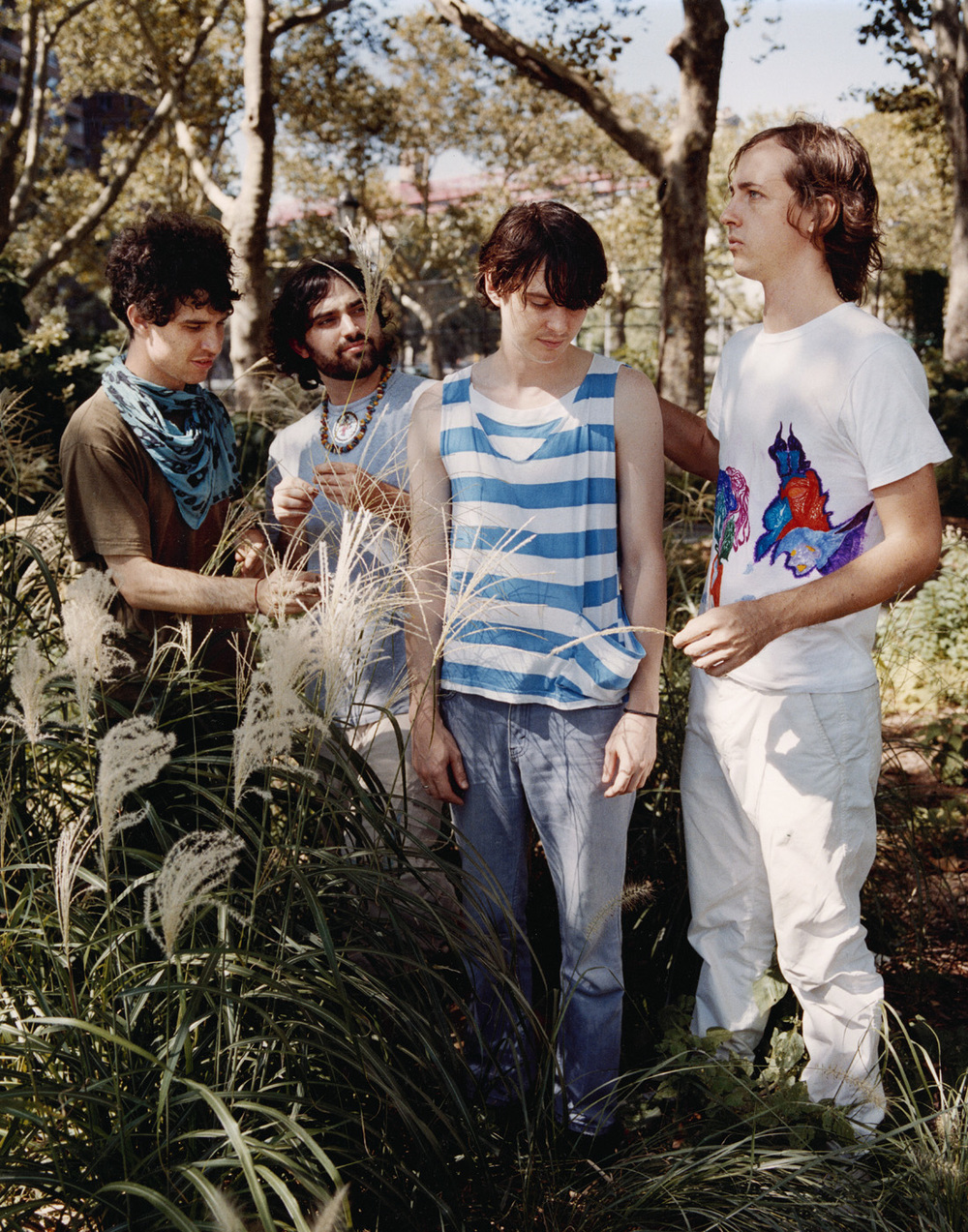 ANIMAL COLLECTIVE   | xlr8r