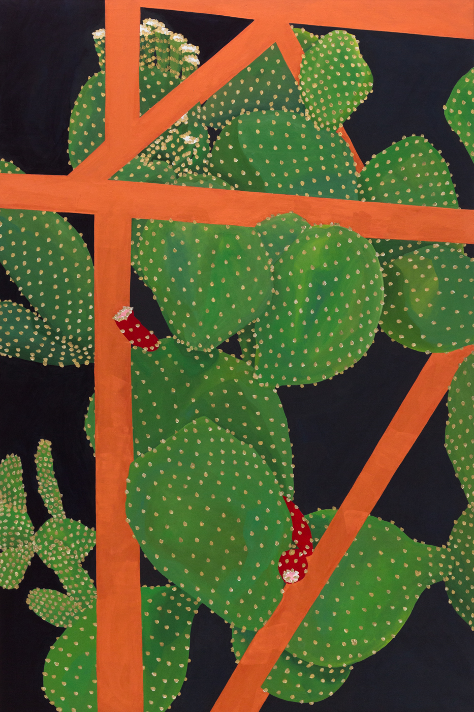 Coulter Cactus, Amelia Steely