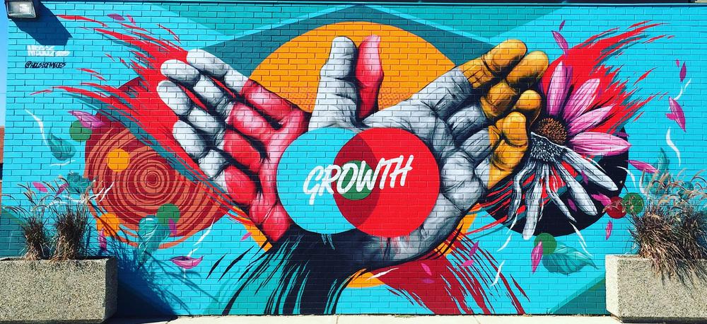 Growth photo Chander.jpg