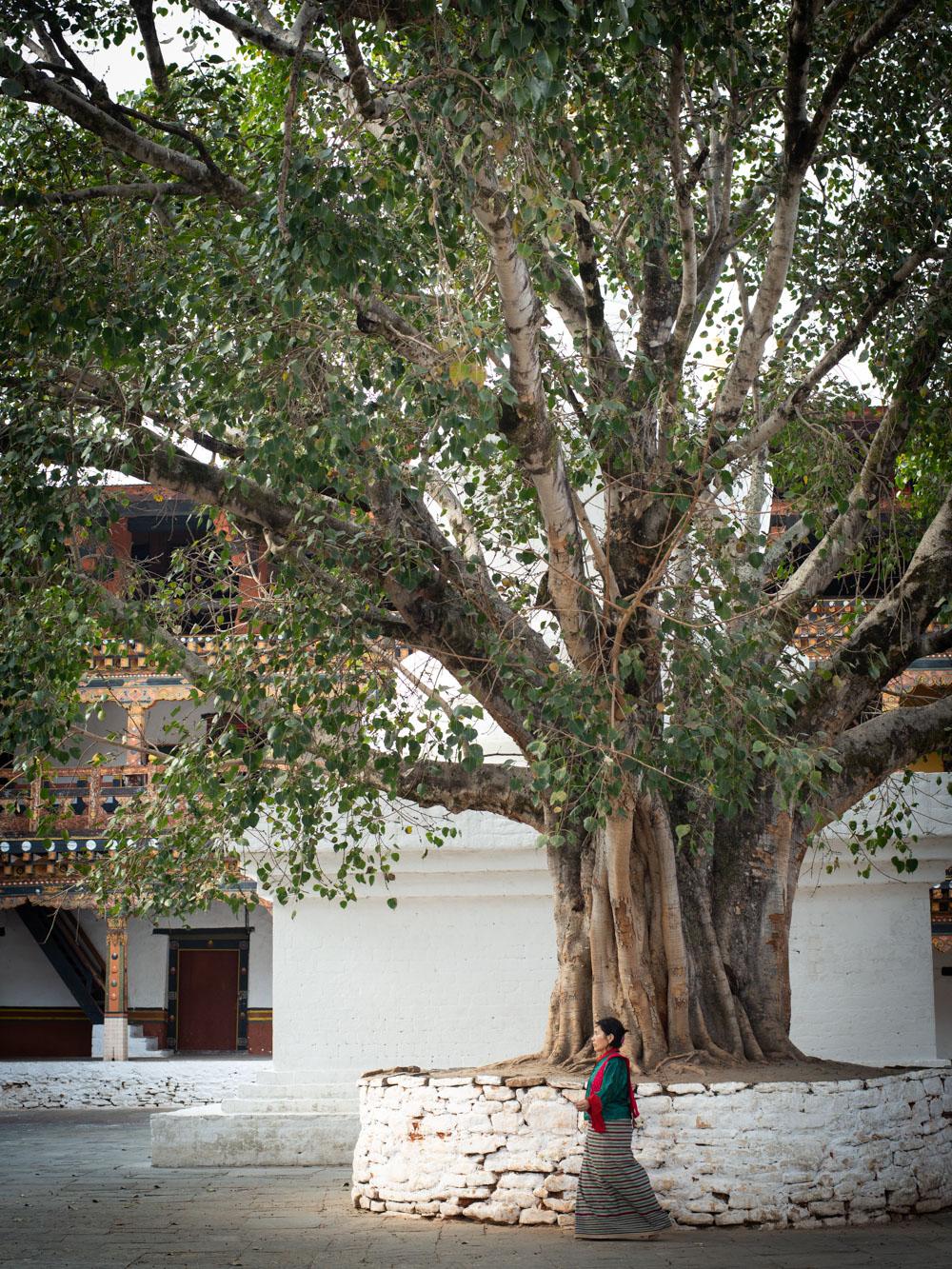 bhutan_014.JPG