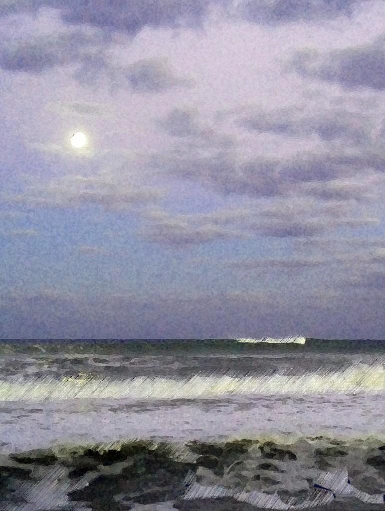 Palm-Beach-Sandy-20-pastel-undereIMG_3769-772x1024.jpg