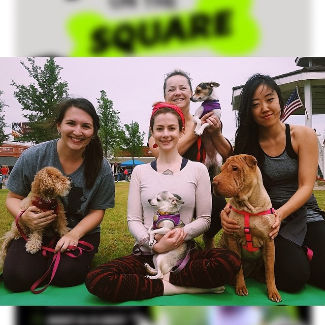 We enjoyed a pawsome practice at #Carrollton City's Paws on the Square. Looking forward to next year! 🙏 #DogaDFW #dallasdogs #dallasyoga #yogawithdogs #yogadogs #yogapup #pawsonthesquare #fitdog