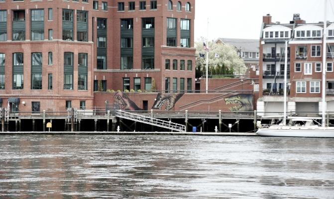Shark Toof, 2011, Harbour Place Marina_2.jpg