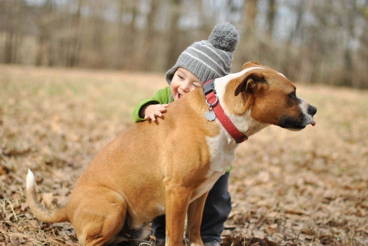 Tongue flicks are calming signals.  This dog isn't licking his chops because he had a meal, it's because he's uncomfortable with the child hugging him.