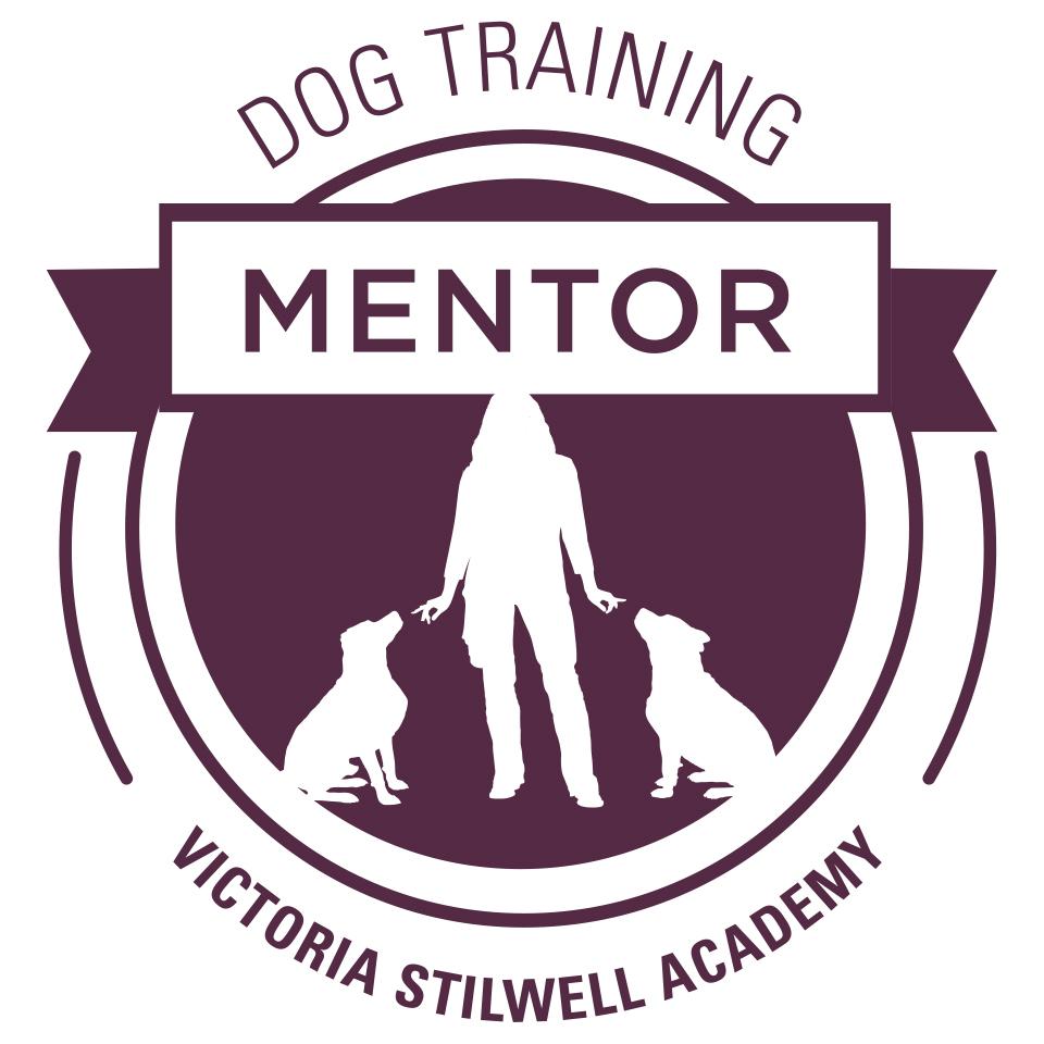 VSA Mentor Badge (purple).jpg