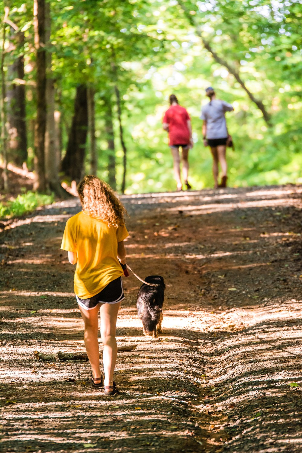 Trail Research-Photo by Carissa Rogers from Pexels.jpg