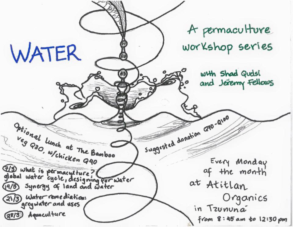 Permaculture Water Series from Atitlán Organics Source: San Marcos Atitlán Community Page (Facebook)
