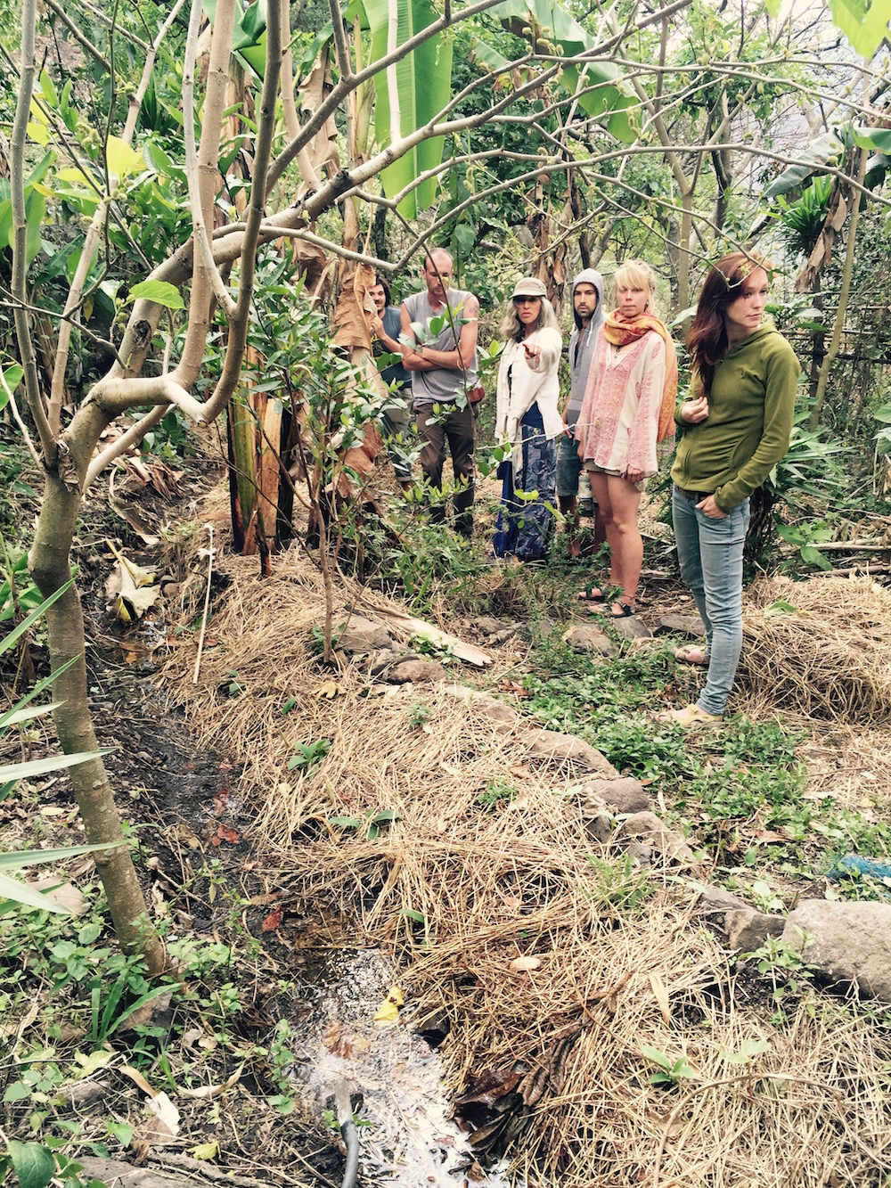 Observing a swale at Atitlán Organics during the Permaculture Water Series.  Photo: Lily Rothrock