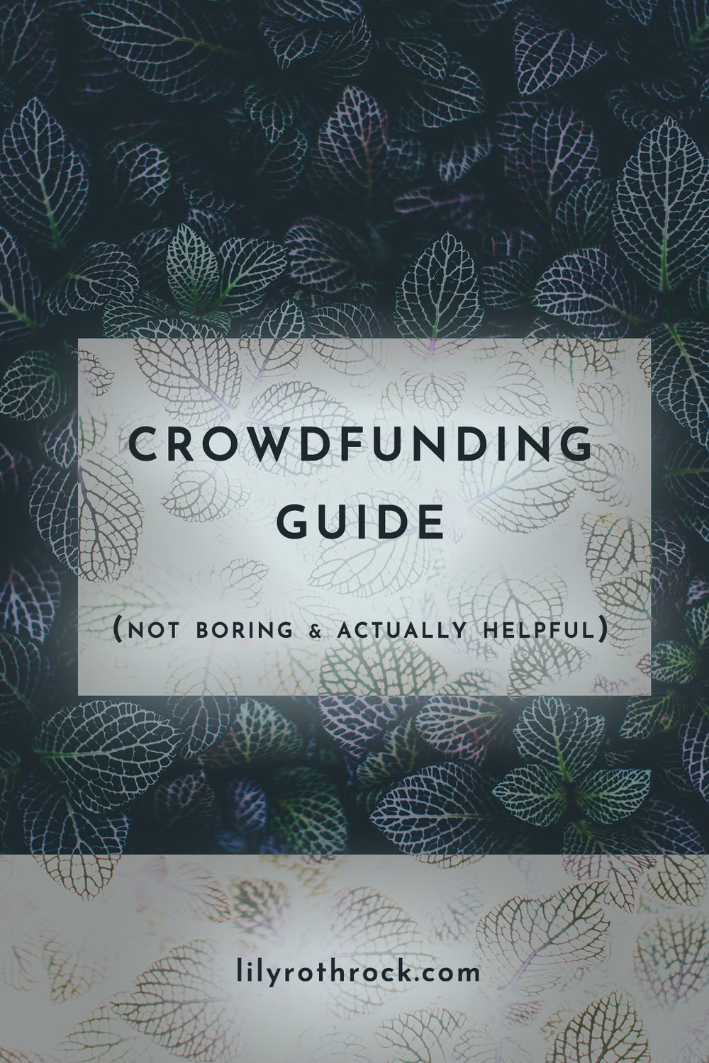 crowdfunding guide.jpg