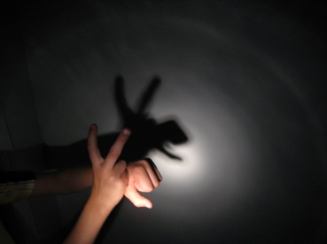 A shadow puppet