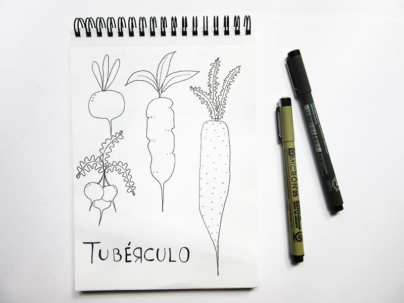 17-desenho-tuberculo