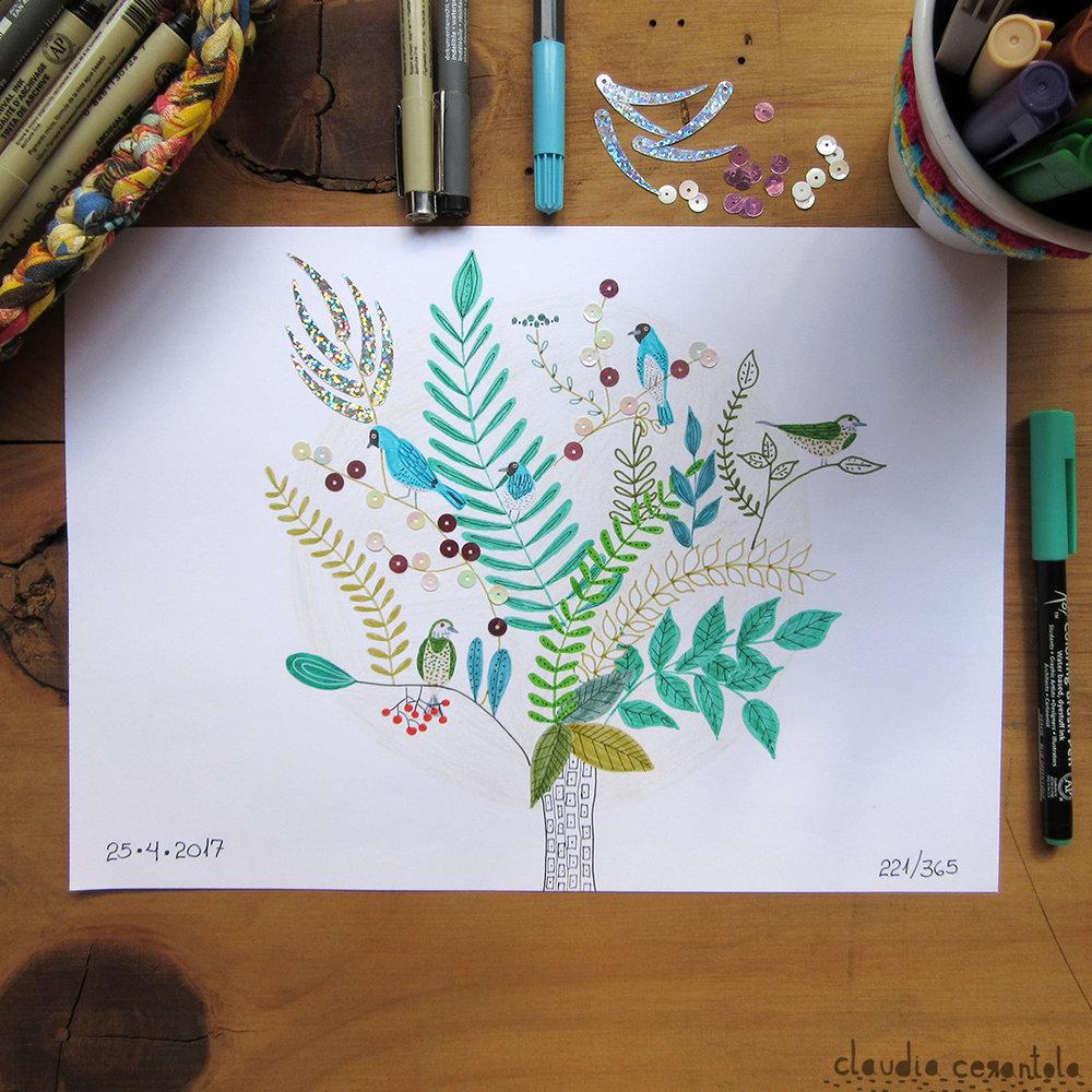 claudia-cerantola-araucaria-221.jpg