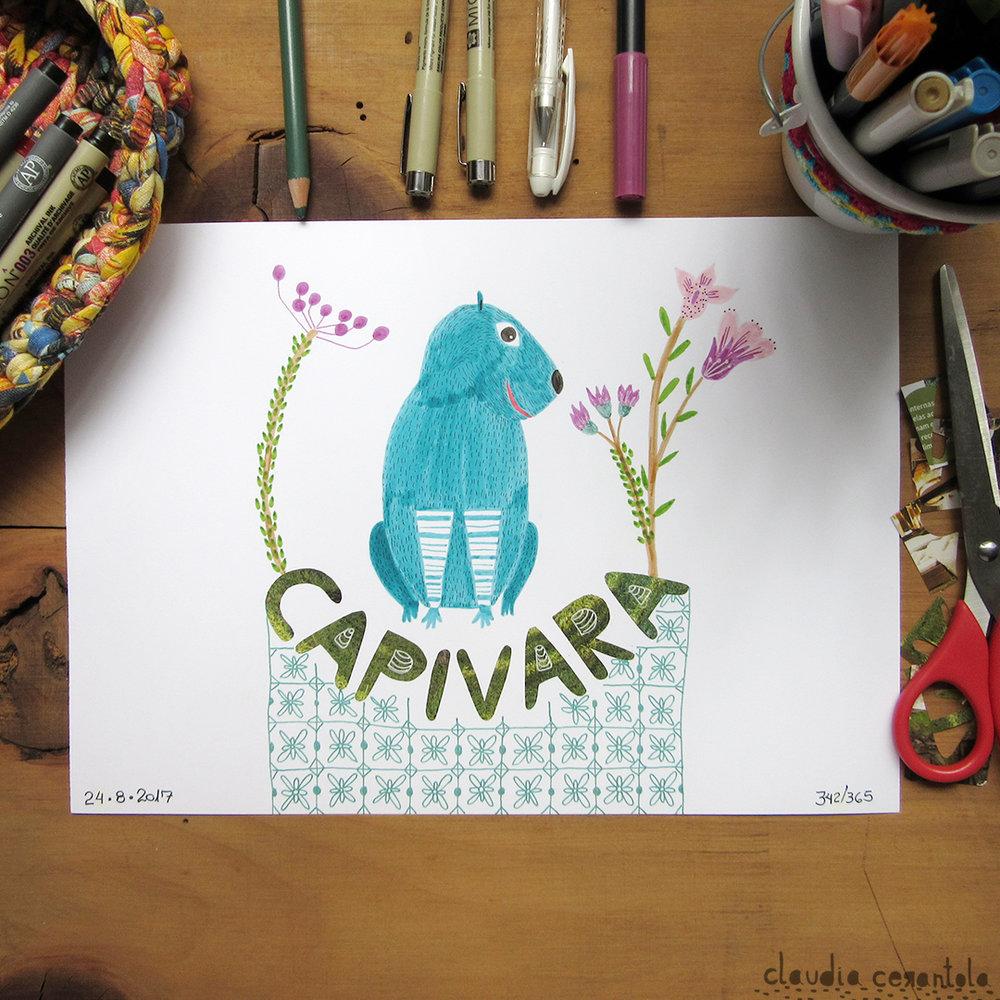 claudia-cerantola-araucaria-342.jpg