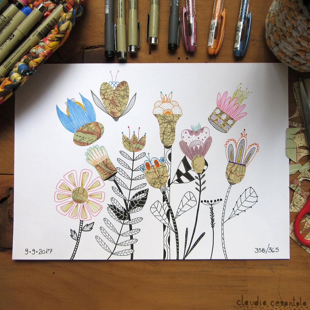 claudia-cerantola-araucaria-358.jpg