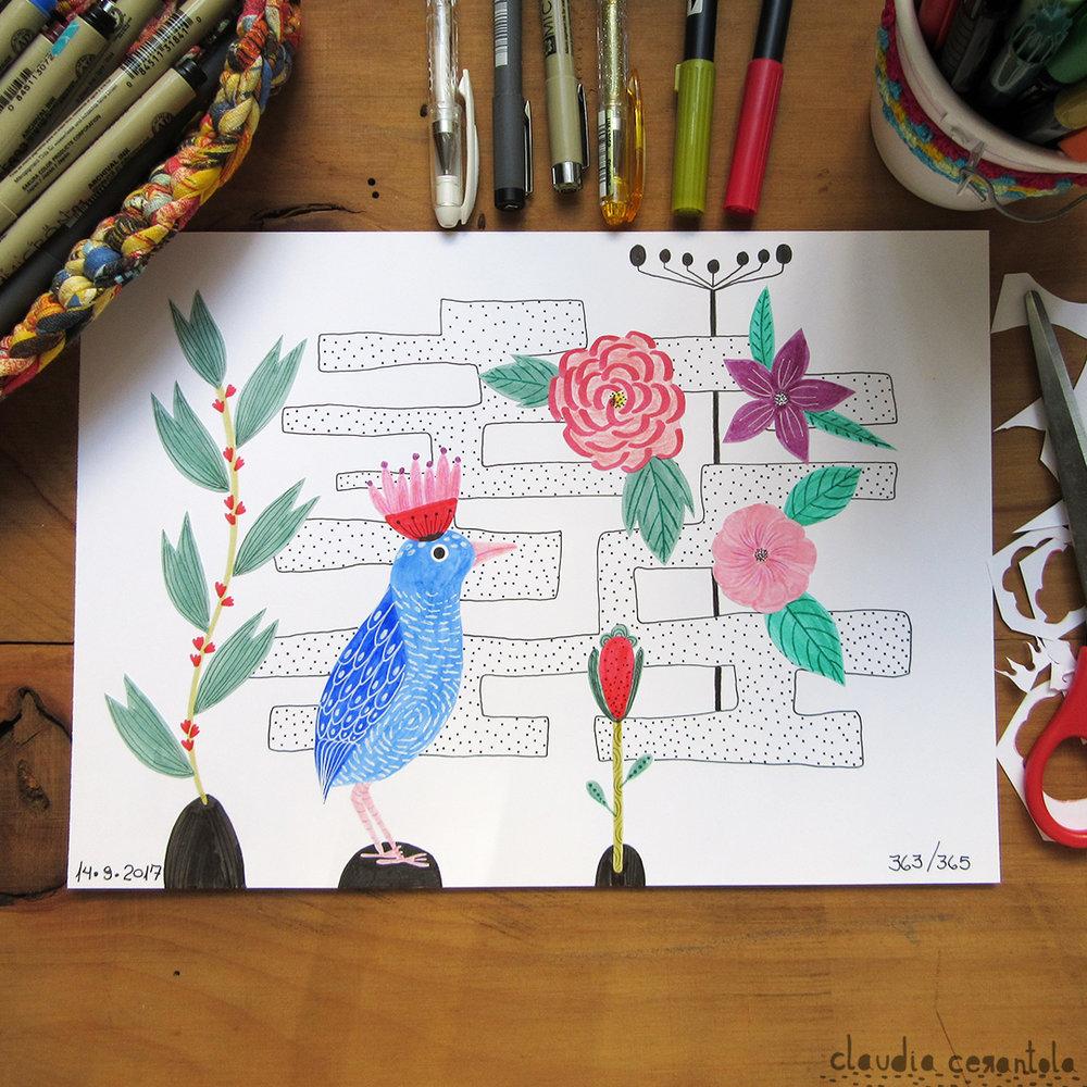 claudia-cerantola-araucaria-363.jpg