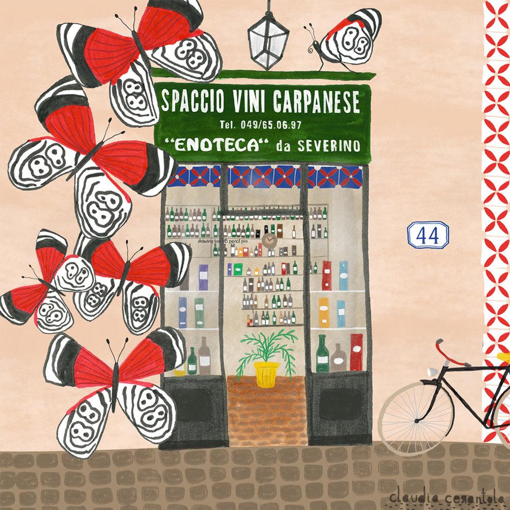 claudia-cerantola-spaccio-carpanese-borboleta88.jpg
