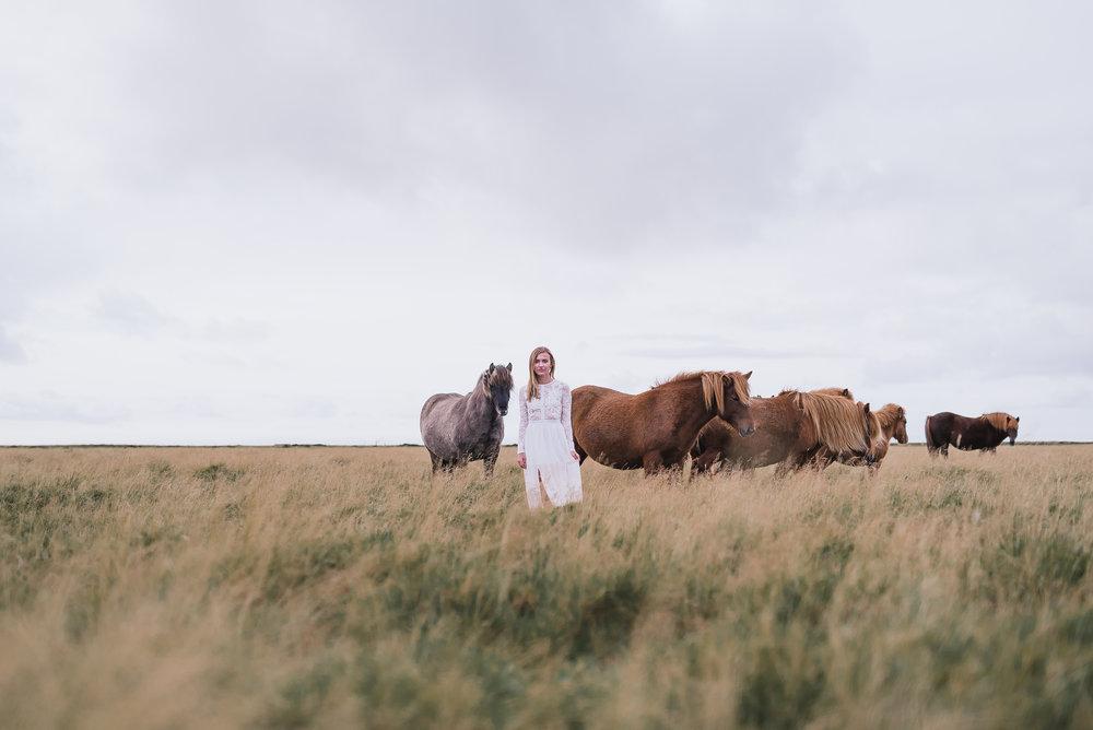 Iceland-66.jpg