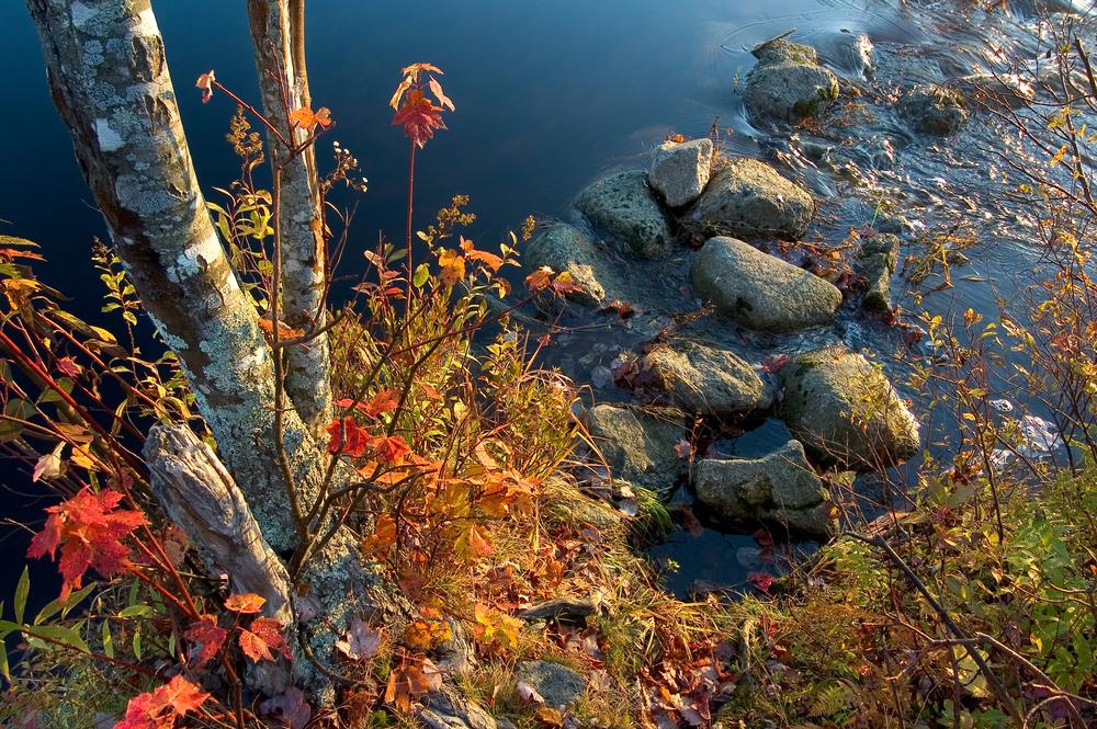 Fraser Lake.jpg