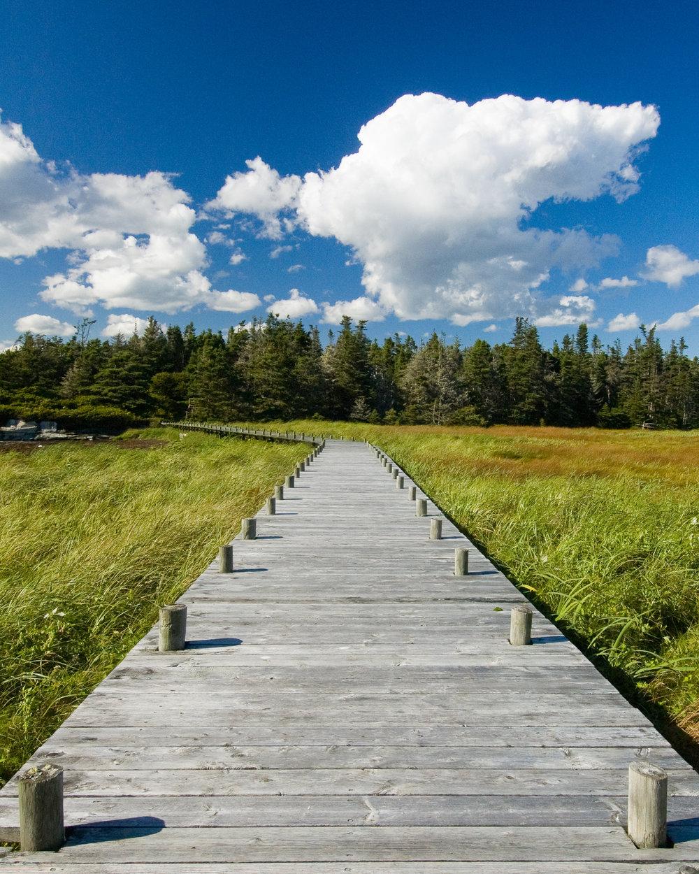 Taylor Head Provincial park, NS