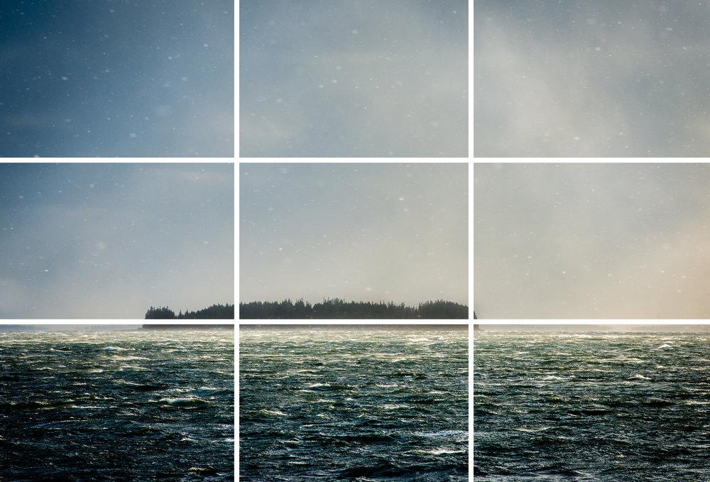_DSC2539_grid.jpg