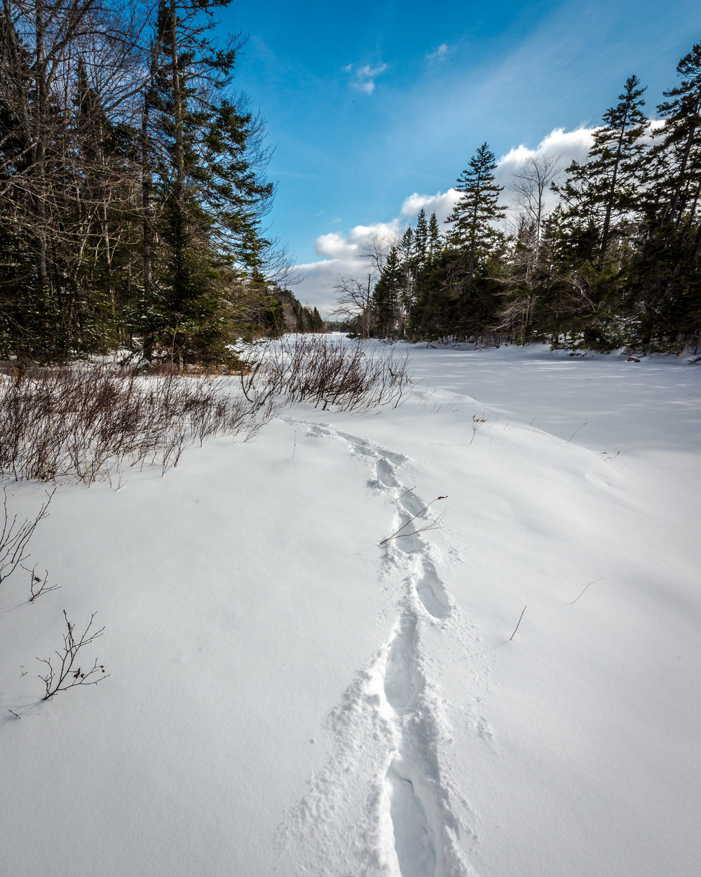 One of the many advantages of winter hiking,  you can always follow your tracks back to the car.