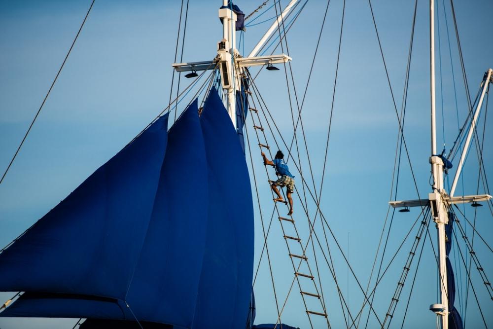 UIY_Samambaia_setting_sails.jpg