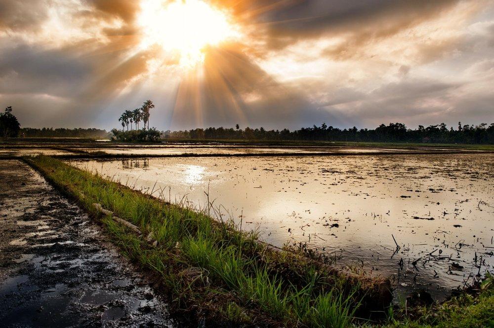 Аренда яхты на Бали, Комодо, Раджа Ампат в Индонезии   СМОТРЕТЬ ЯХТЫ